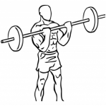 Musculation biceps : curl barre