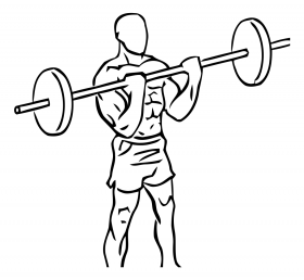 Musculation : exercices pour muscler ses biceps