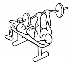 Musculation triceps : French Press